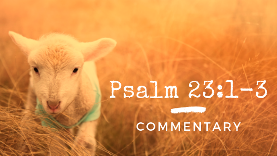 23rd psalms commentary